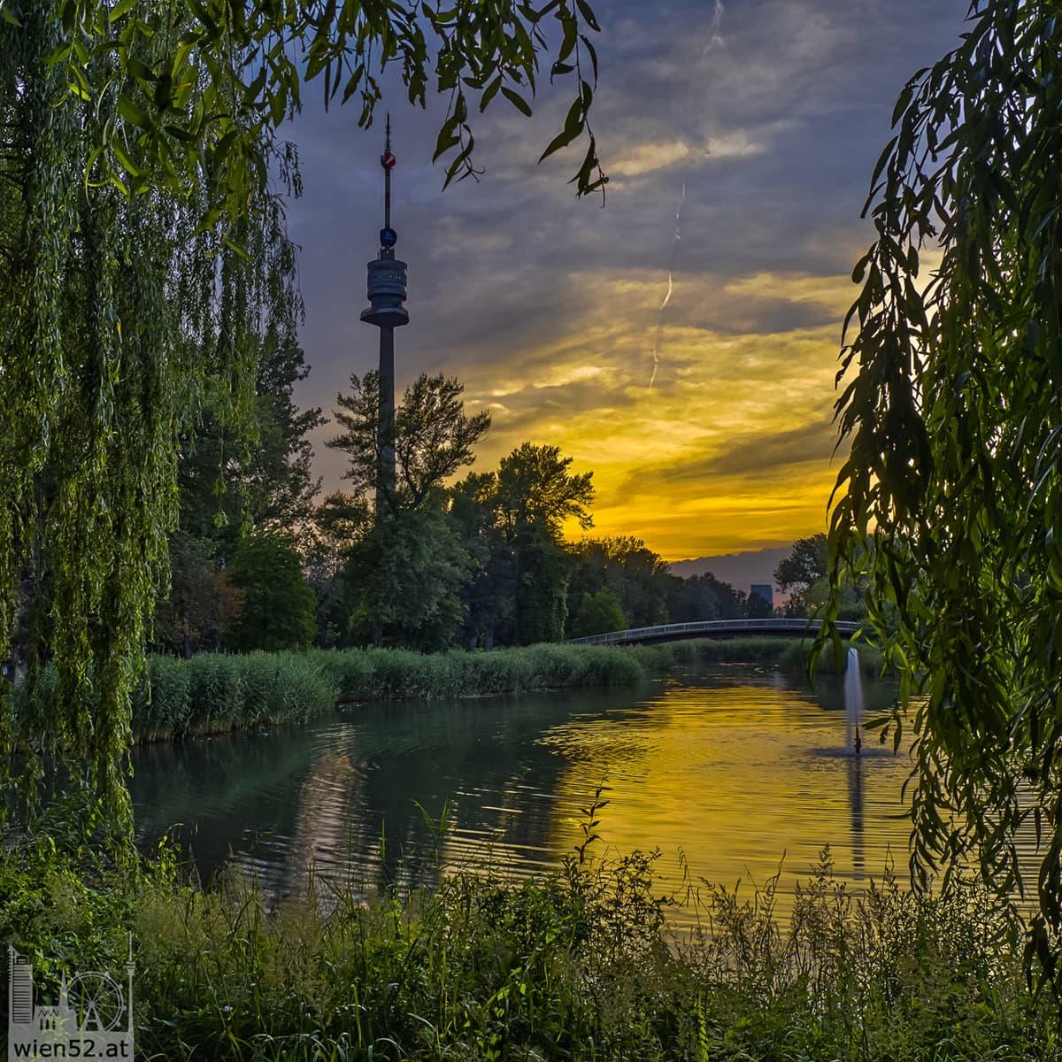 Irissee  Donaupark
