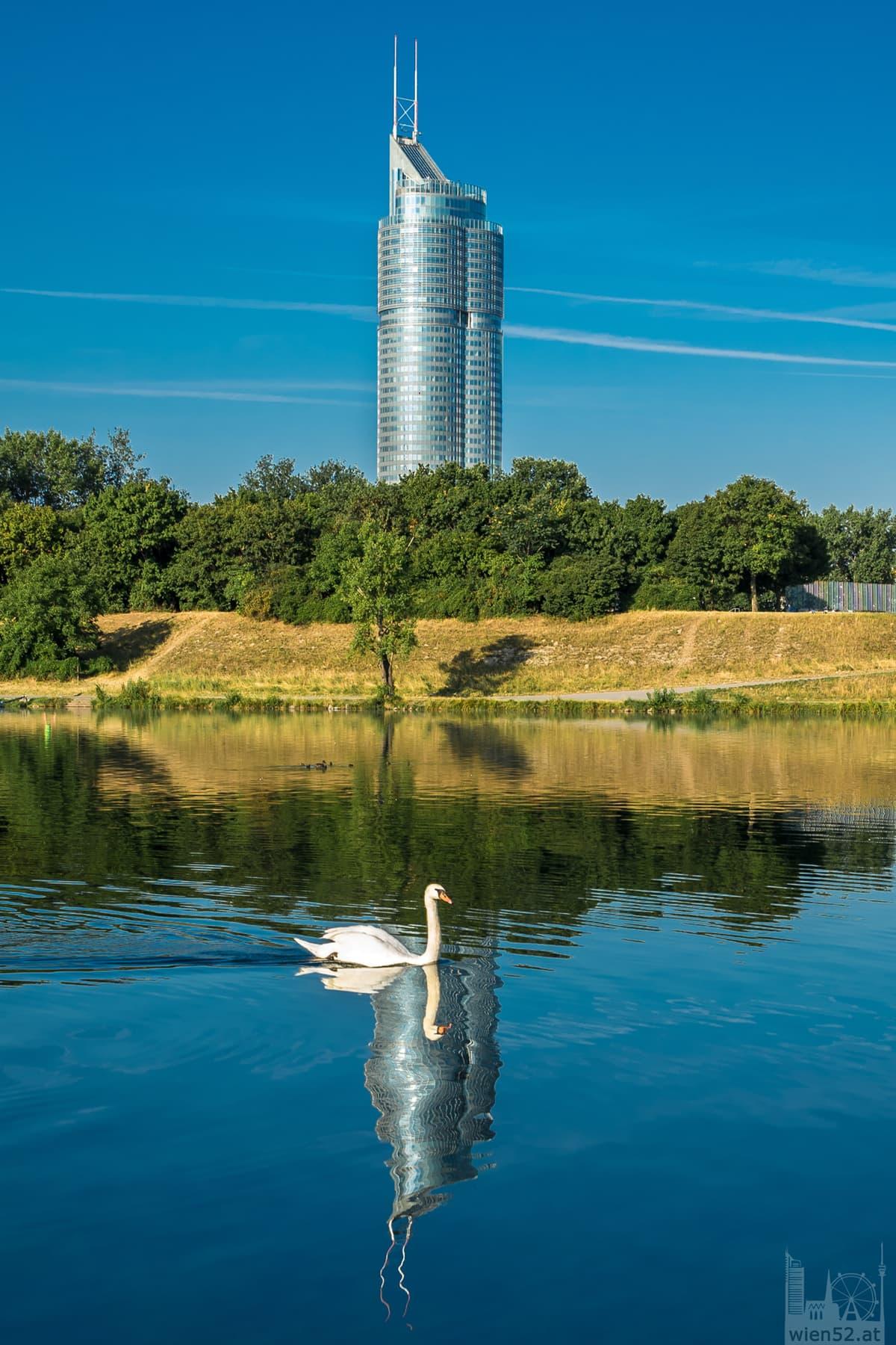 Spiegelung Millennium Tower in der Neuen Donau