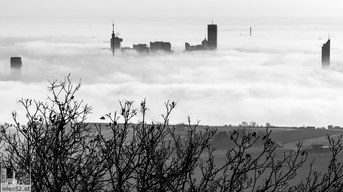 Wien im Nebel