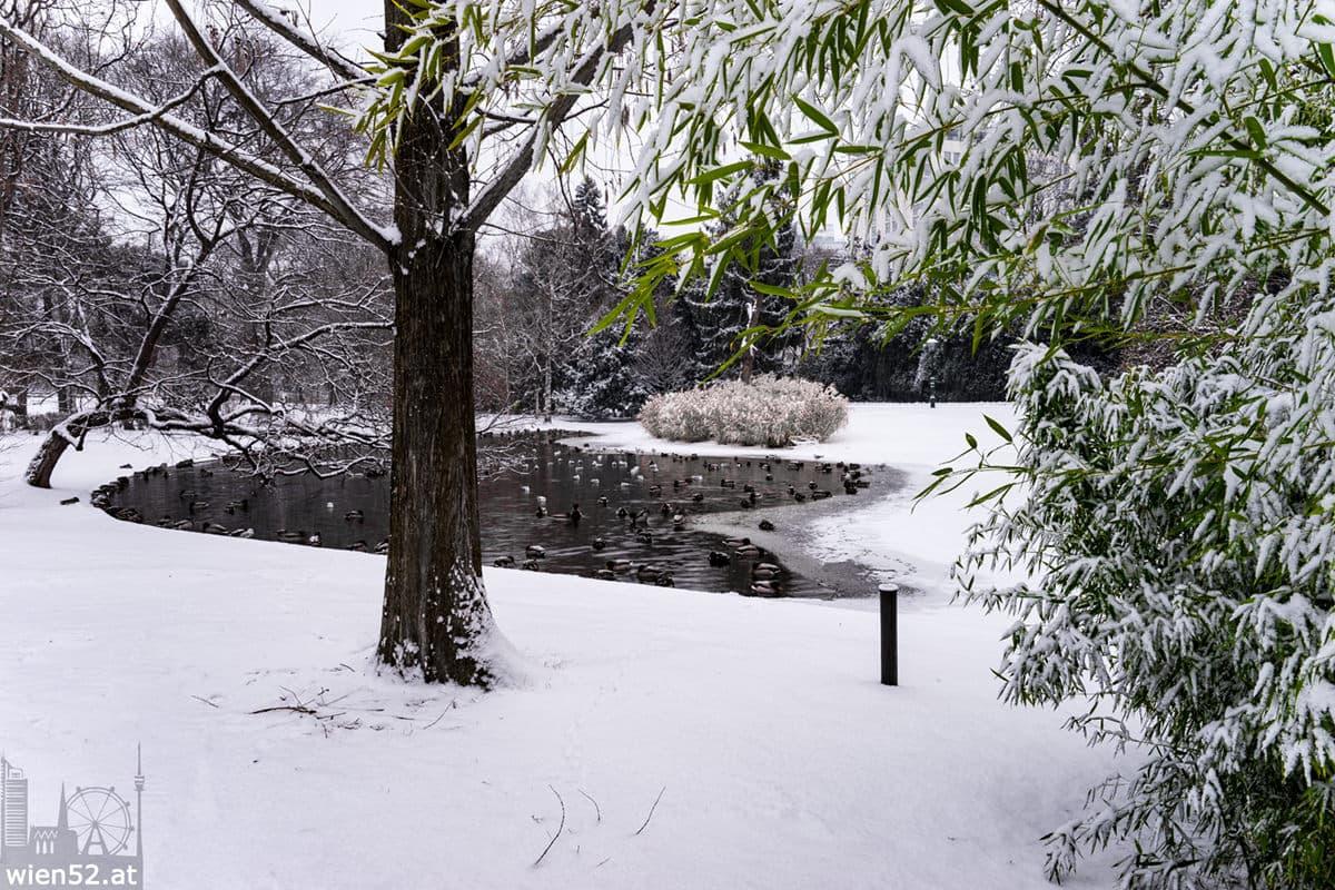 Schnee  Wiener Stadtpark