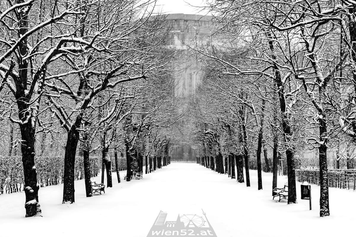 Schnee  Augarten
