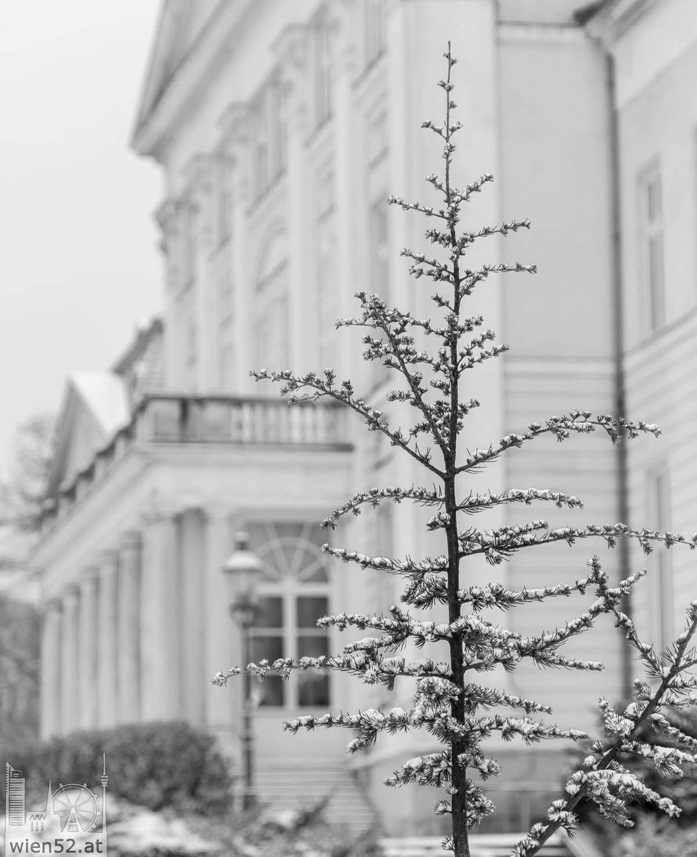 Schloss Wilhelminenberg im Schnee